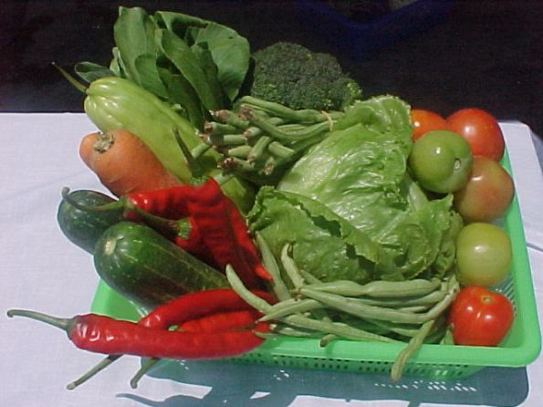 http://justasimplethoughts.files.wordpress.com/2010/08/sayur.jpg